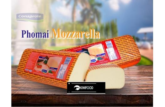 Phomai Mozzarella và các dòng phomai được ưa chuộng phổ biến